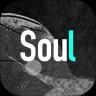 Soul视频解析